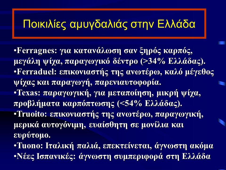 Ποικιλίες αμυγδαλιάς στην Ελλάδα Ferragnes: για κατανάλωση σαν ξηρός καρπός, μεγάλη ψίχα, παραγωγικό δέντρο (>34% Ελλάδας).Ferragnes: για κατανάλωση σ