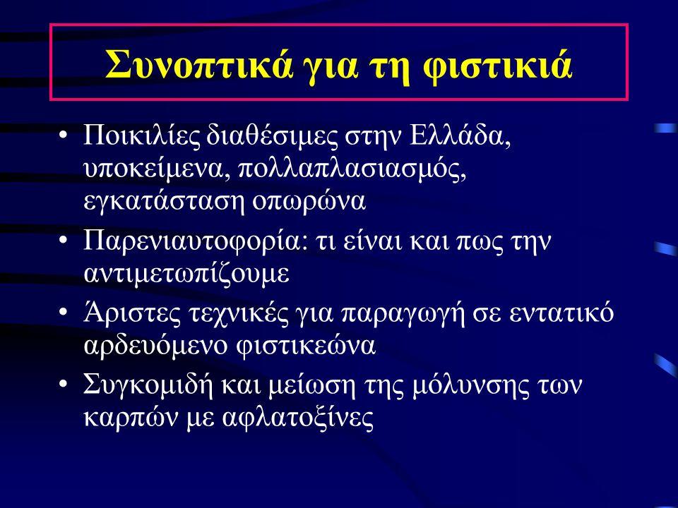 Συνοπτικά για τη φιστικιά Ποικιλίες διαθέσιμες στην Ελλάδα, υποκείμενα, πολλαπλασιασμός, εγκατάσταση οπωρώνα Παρενιαυτοφορία: τι είναι και πως την αντ