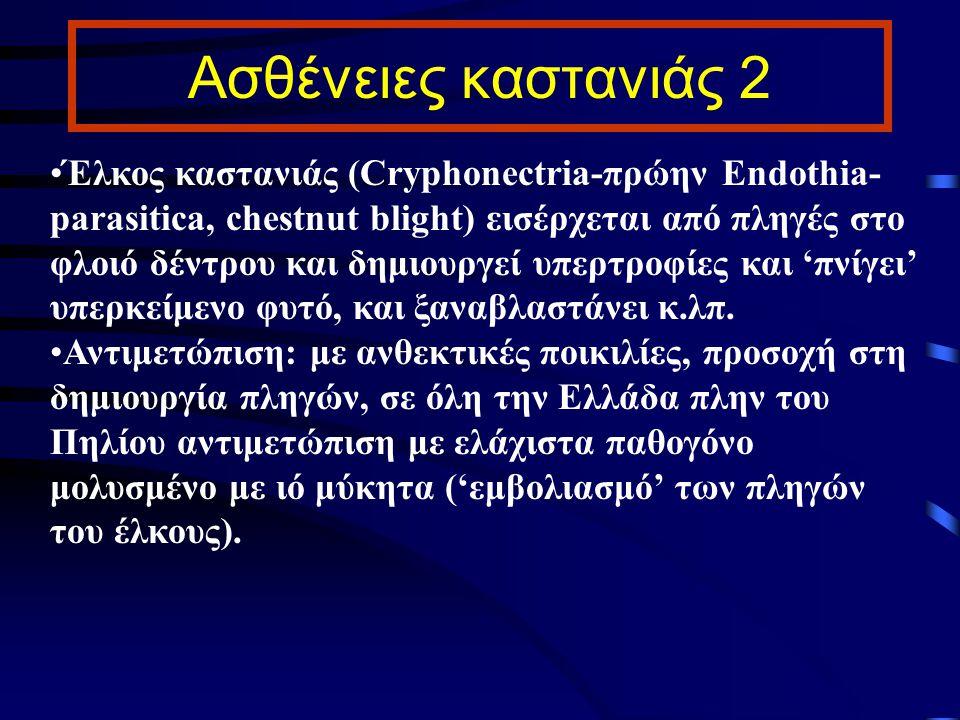 Ασθένειες καστανιάς 2 Έλκος καστανιάς (Cryphonectria-πρώην Endothia- parasitica, chestnut blight) εισέρχεται από πληγές στο φλοιό δέντρου και δημιουργ