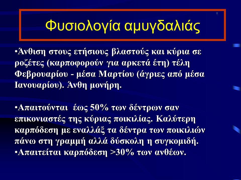 Λίπανση Στους ξηρικούς Ν, Ρ, Κ τέλος Χειμώνα ανάλογα την αναμενόμενη παραγωγή και πολύ περισσότερο στις θηλυκές.