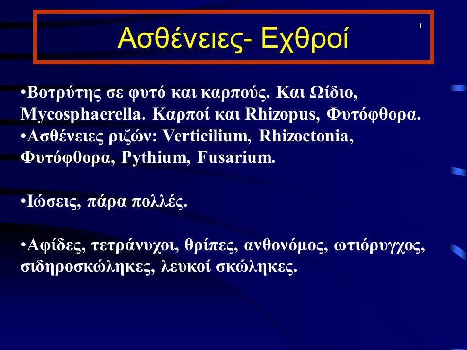 Ασθένειες- Εχθροί Βοτρύτης σε φυτό και καρπούς. Και Ωίδιο, Mycosphaerella. Καρποί και Rhizopus, Φυτόφθορα. Ασθένειες ριζών: Verticilium, Rhizoctonia,