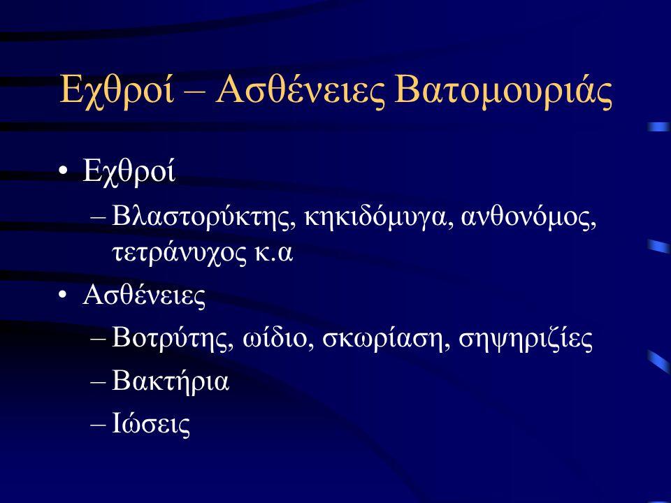 Εχθροί – Ασθένειες Βατομουριάς Εχθροί –Βλαστορύκτης, κηκιδόμυγα, ανθονόμος, τετράνυχος κ.α Ασθένειες –Βοτρύτης, ωίδιο, σκωρίαση, σηψηριζίες –Βακτήρια