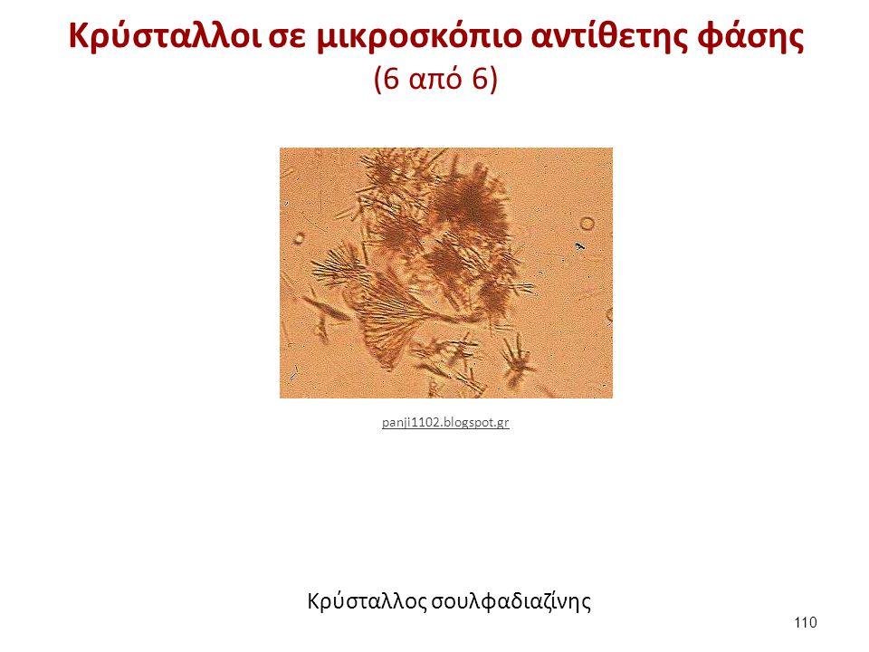 Κρύσταλλοι σε μικροσκόπιο αντίθετης φάσης (6 από 6) 110 panji1102.blogspot.gr Κρύσταλλος σουλφαδιαζίνης