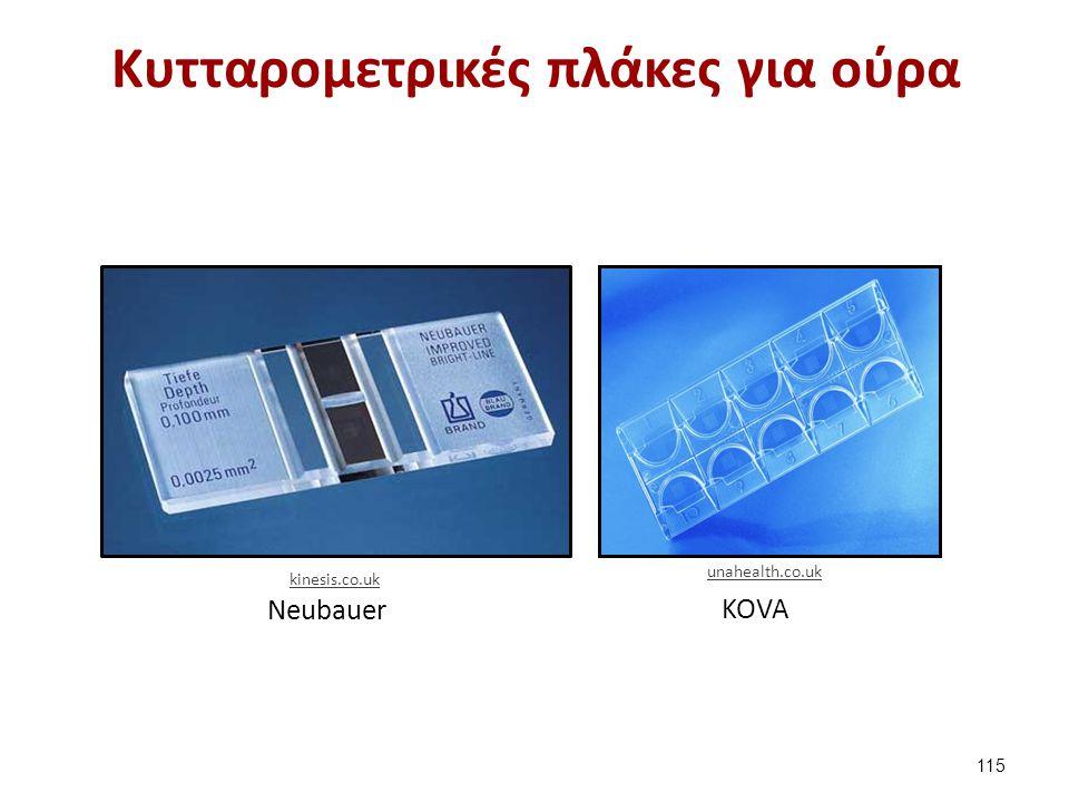 Κυτταρομετρικές πλάκες για ούρα Νeubauer KOVA 115 kinesis.co.uk unahealth.co.uk