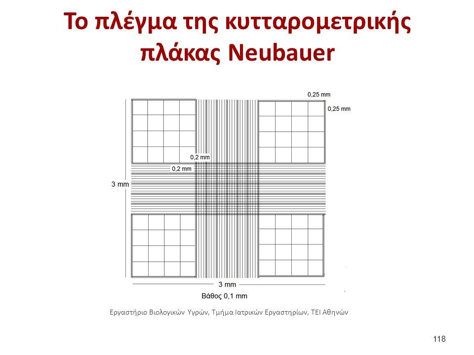 Το πλέγμα της κυτταρομετρικής πλάκας Νeubauer 118 Εργαστήριο Βιολογικών Υγρών, Τμήμα Ιατρικών Εργαστηρίων, ΤΕΙ Αθηνών