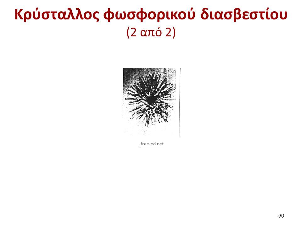 Κρύσταλλος φωσφορικού διασβεστίου (2 από 2) 66 free-ed.net