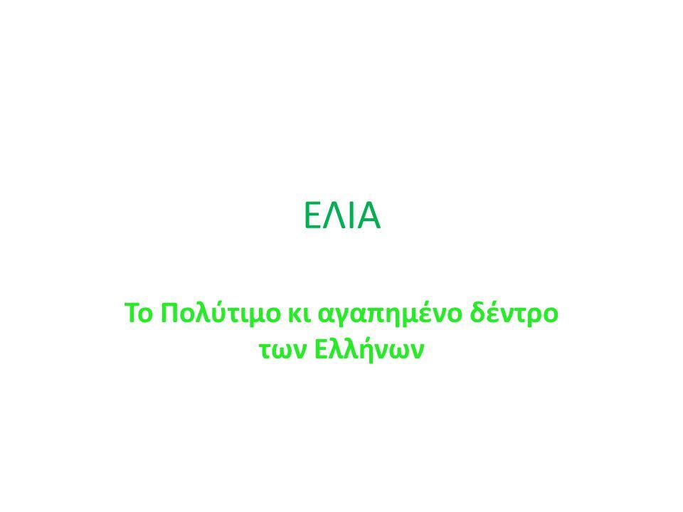 ΕΛΙΑ Το Πολύτιμο κι αγαπημένο δέντρο των Ελλήνων