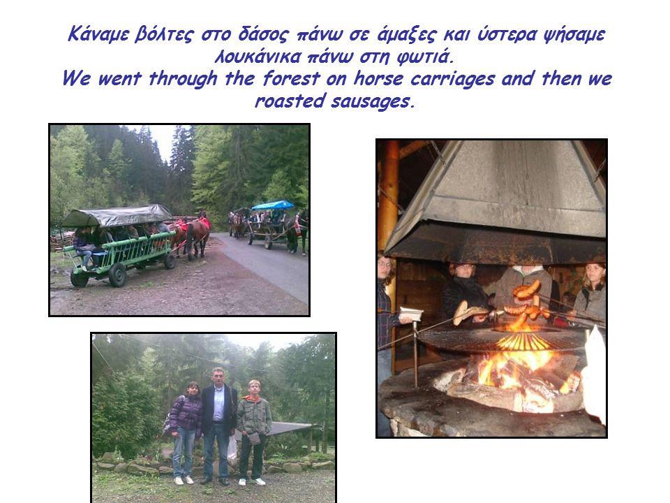 Kάναμε βόλτες στο δάσος πάνω σε άμαξες και ύστερα ψήσαμε λουκάνικα πάνω στη φωτιά.