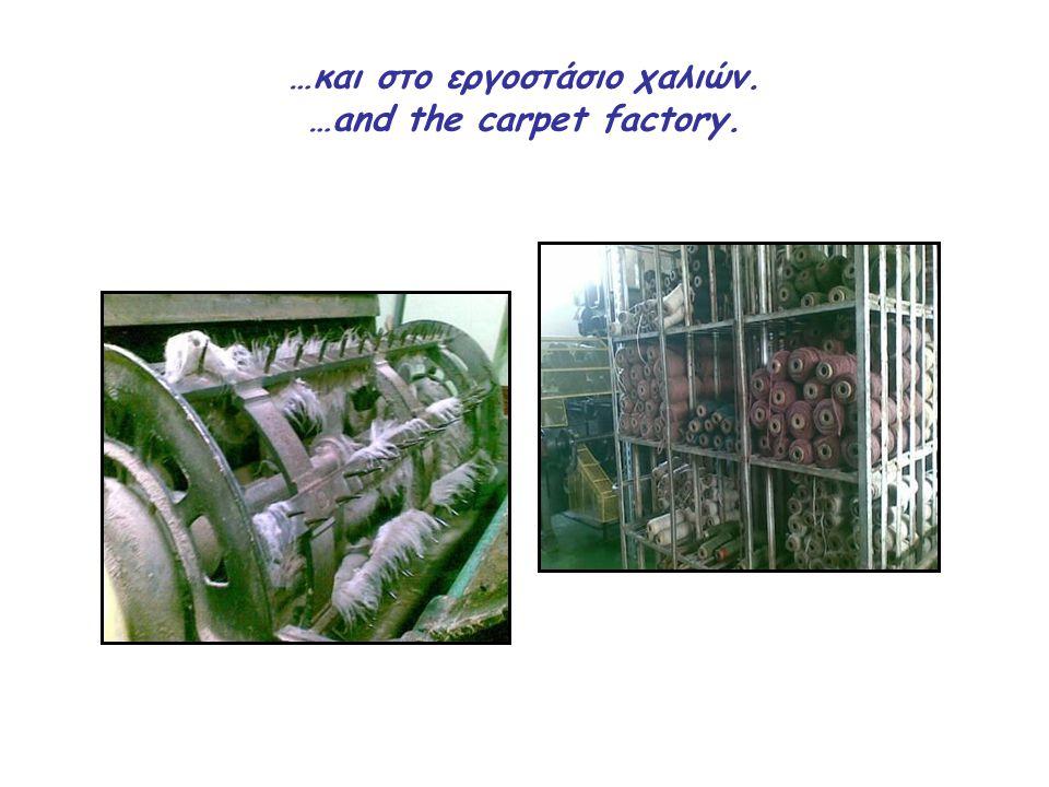 …και στο εργοστάσιο χαλιών. …and the carpet factory.