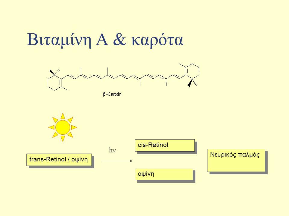 Bιταμίνη Α & καρότα trans-Retinol / οψίνη οψίνη Νευρικός παλμός cis-Retinol hνhν