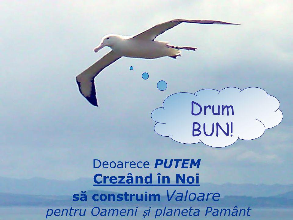 Deoarece PUTEM Crezând în Noi să construim Valoare pentru Oameni i planeta Pamânt Drum BUN!