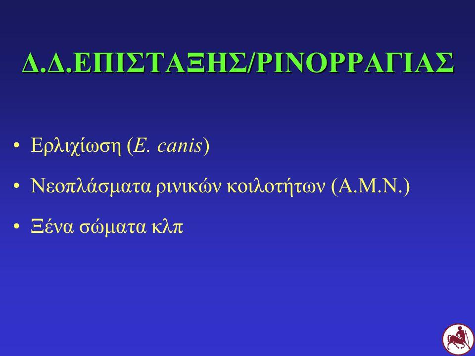 Δ.Δ.ΕΠΙΣΤΑΞΗΣ/ΡΙΝΟΡΡΑΓΙΑΣ Ερλιχίωση (E. canis) Νεοπλάσματα ρινικών κοιλοτήτων (Α.Μ.Ν.) Ξένα σώματα κλπ