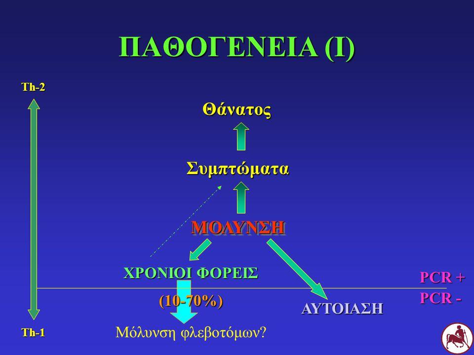 ΑΝΘΕΚΤΙΚΟΙ ΣΚΥΛΟΙ IL-2 IL-12 IFN -γ TNF-α Th1 ΛΕΜΦΟΚΥΤΤΑΡΑ ΕΝΕΡΓΟΠΟΙΗΣΗ ΜΑΚΡΟΦΑΓΩΝ Ενδοκυτταρική παραγωγή οξειδίου του αζώτου ΘΑΝΑΤΩΣΗ LEISHMANIA
