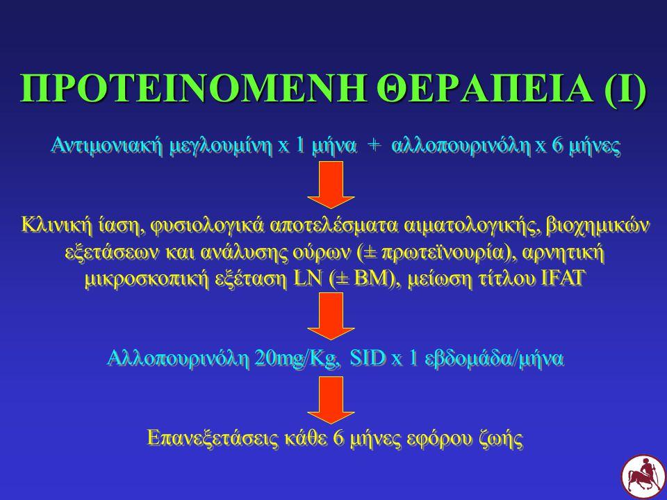 ΠΡΟΤΕΙΝΟΜΕΝΗ ΘΕΡΑΠΕΙΑ (I) Αντιμονιακή μεγλουμίνη x 1 μήνα + αλλοπουρινόλη x 6 μήνες Κλινική ίαση, φυσιολογικά αποτελέσματα αιματολογικής, βιοχημικών ε