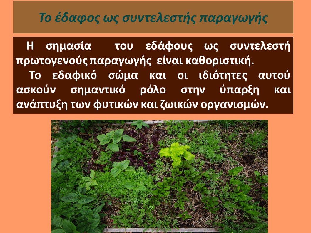 Το έδαφος τροφοδοτεί τα φυτά με τα απαραίτητα θρεπτικά στοιχεία και το νερό και γενικώς αποτελεί το υπόστρωμα για τη διατήρηση και ανάπτυξή τους.