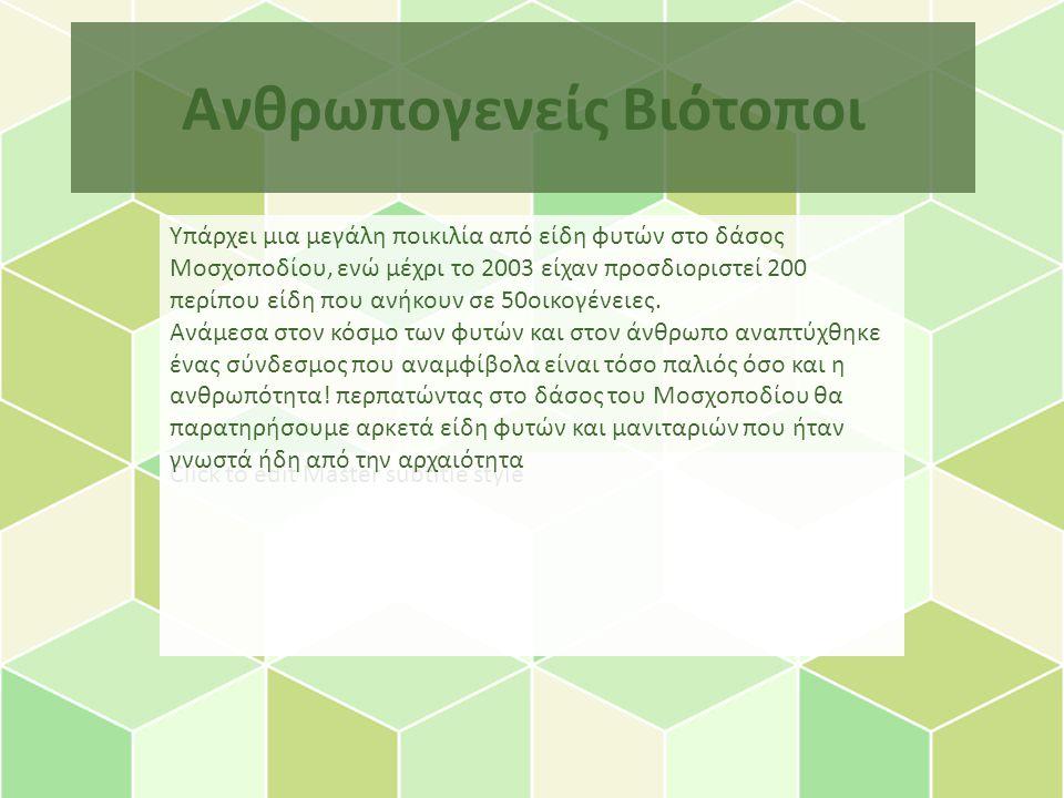 Click to edit Master subtitle style Ανθρωπογενείς Βιότοποι Υπάρχει μια μεγάλη ποικιλία από είδη φυτών στο δάσος Μοσχοποδίου, ενώ μέχρι το 2003 είχαν προσδιοριστεί 200 περίπου είδη που ανήκουν σε 50οικογένειες.