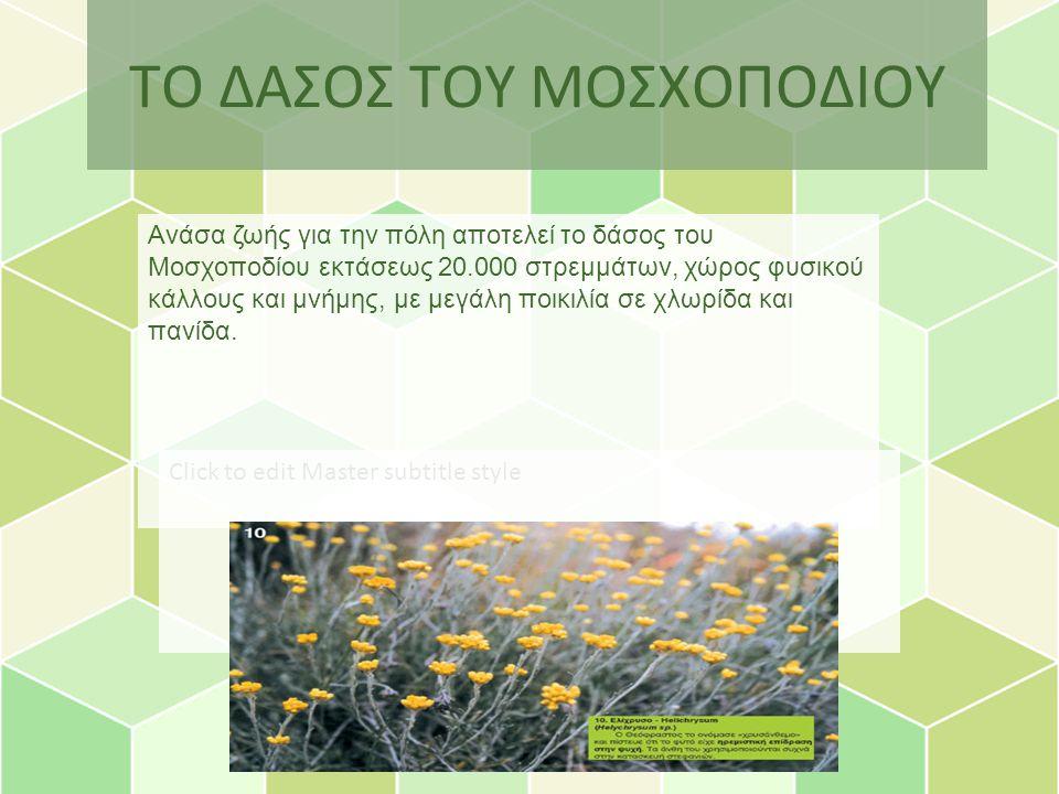 Click to edit Master subtitle style ΤΟ ΔΑΣΟΣ ΤΟΥ ΜΟΣΧΟΠΟΔΙΟΥ Ανάσα ζωής για την πόλη αποτελεί το δάσος του Μοσχοποδίου εκτάσεως 20.000 στρεμμάτων, χώρος φυσικού κάλλους και μνήμης, με μεγάλη ποικιλία σε χλωρίδα και πανίδα.