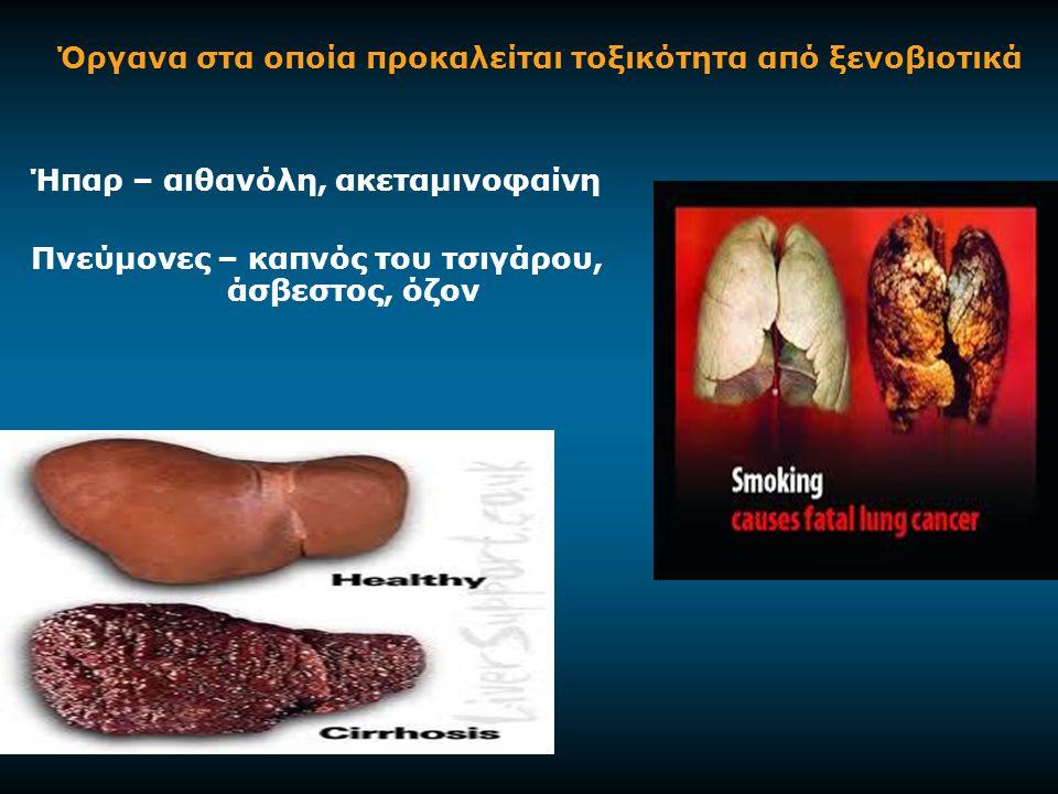 Όργανα στα οποία προκαλείται τοξικότητα από ξενοβιοτικά Ήπαρ – αιθανόλη, ακεταμινοφαίνη Πνεύμονες – καπνός του τσιγάρου, άσβεστος, όζον