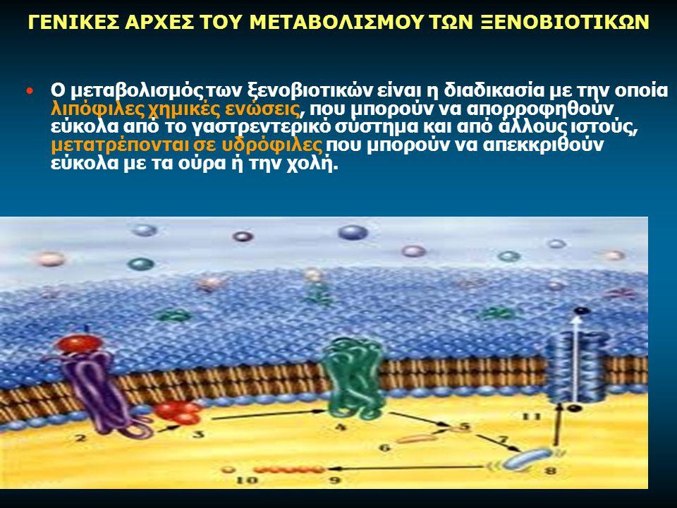 ΓΕΝΙΚΕΣ ΑΡΧΕΣ ΤΟΥ ΜΕΤΑΒΟΛΙΣΜΟΥ ΤΩΝ ΞΕΝΟΒΙΟΤΙΚΩΝ Ο μεταβολισμός των ξενοβιοτικών είναι η διαδικασία με την οποία λιπόφιλες χημικές ενώσεις, που μπορούν να απορροφηθούν εύκολα από το γαστρεντερικό σύστημα και από άλλους ιστούς, μετατρέπονται σε υδρόφιλες που μπορούν να απεκκριθούν εύκολα με τα ούρα ή την χολή.