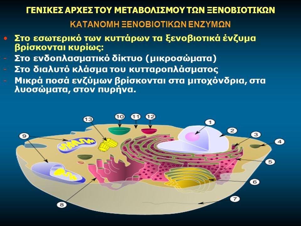 ΚΑΤΑΝΟΜΗ ΞΕΝΟΒΙΟΤΙΚΩΝ ΕΝΖΥΜΩΝ Στο εσωτερικό των κυττάρων τα ξενοβιοτικά ένζυμα βρίσκονται κυρίως: -Στο ενδοπλασματικό δίκτυο (μικροσώματα) -Στο διαλυτό κλάσμα του κυτταροπλάσματος -Μικρά ποσά ενζύμων βρίσκονται στα μιτοχόνδρια, στα λυοσώματα, στον πυρήνα.