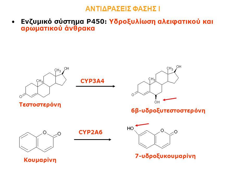 Ενζυμικό σύστημα Ρ450: Υδροξυλίωση αλειφατικού και αρωματικού άνθρακα ΑΝΤΙΔΡΑΣΕΙΣ ΦΑΣΗΣ Ι Τεστοστερόνη 6β-υδροξυτεστοστερόνη CYP3A4 CYP2A6 Κουμαρίνη 7-υδροξυκουμαρίνη