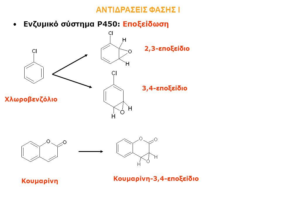 Ενζυμικό σύστημα Ρ450: Εποξείδωση ΑΝΤΙΔΡΑΣΕΙΣ ΦΑΣΗΣ Ι Χλωροβενζόλιο 2,3-εποξείδιο 3,4-εποξείδιο Κουμαρίνη Κουμαρίνη-3,4-εποξείδιο