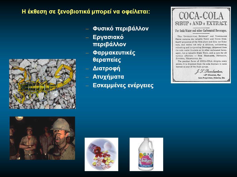 Ο αιματοεγκεφαλικός φραγμός προστατεύει τον εγκέφαλο από την τοξική δράση των ξενοβιοτικών.