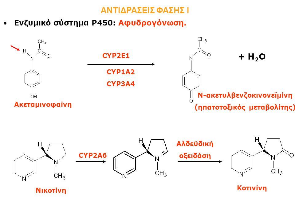 Ενζυμικό σύστημα Ρ450: Αφυδρογόνωση.