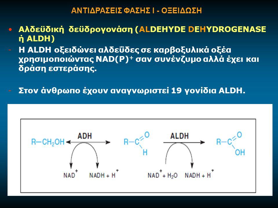 Αλδεϋδική δεϋδρογονάση (ALDEHYDE DEHYDROGENASE ή ALDH) -H ΑLDH οξειδώνει αλδεΰδες σε καρβοξυλικά οξέα χρησιμοποιώντας NAD(P) + σαν συνένζυμο αλλά έχει και δράση εστεράσης.