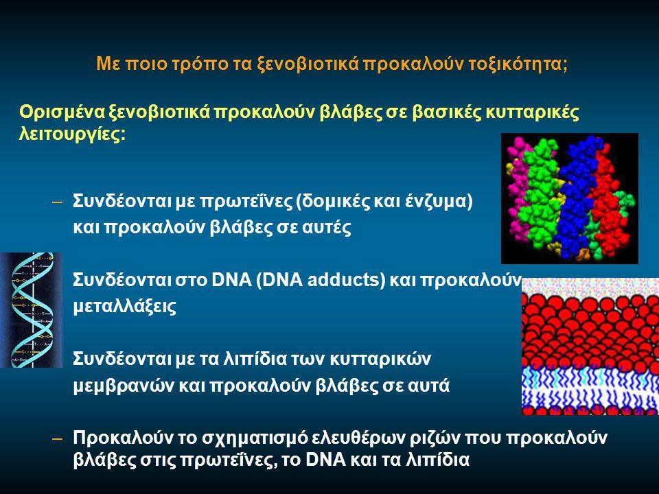 Αποτελέσματα τοξικής δράσης ξενοβιοτικών Βλάβες σε όργανα – όζον, μόλυβδος Μεταλλαξιγένεση Καρκινογένεση - βενζίνη, αμίαντος Τερατογένεση – θαλιδομίδη Θάνατος - αρσενικό, κυάνιο