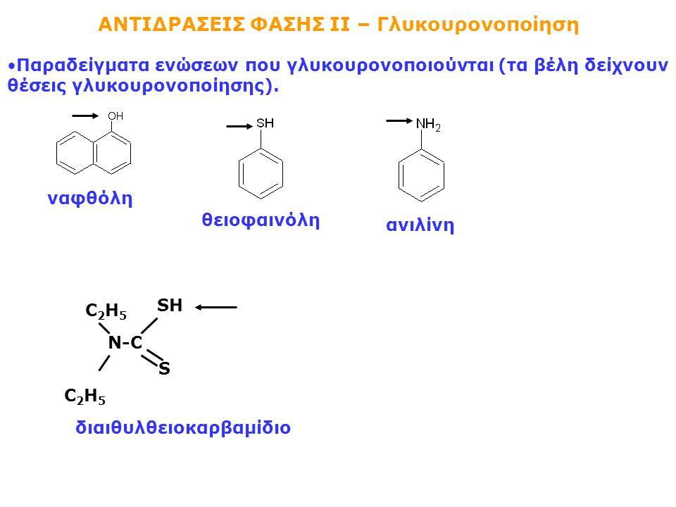 ΑΝΤΙΔΡΑΣΕΙΣ ΦΑΣΗΣ ΙΙ – Γλυκουρονοποίηση Παραδείγματα ενώσεων που γλυκουρονοποιούνται (τα βέλη δείχνουν θέσεις γλυκουρονοποίησης).