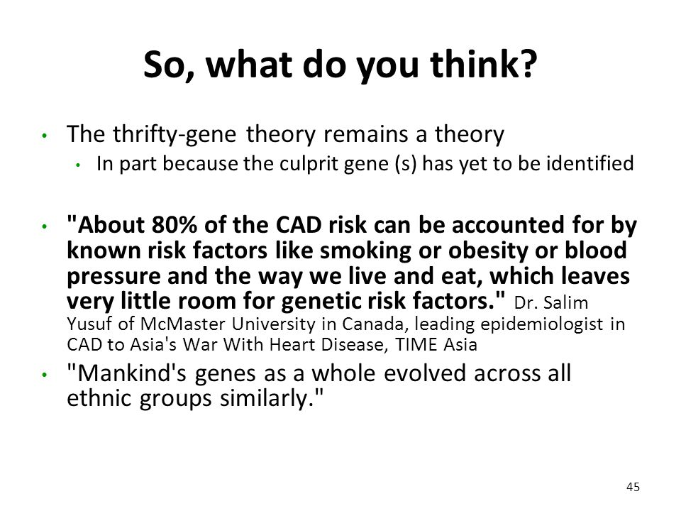 So, what do you think? The thrifty-gene theory remains a theory In part because the culprit gene (s) has yet to be identified