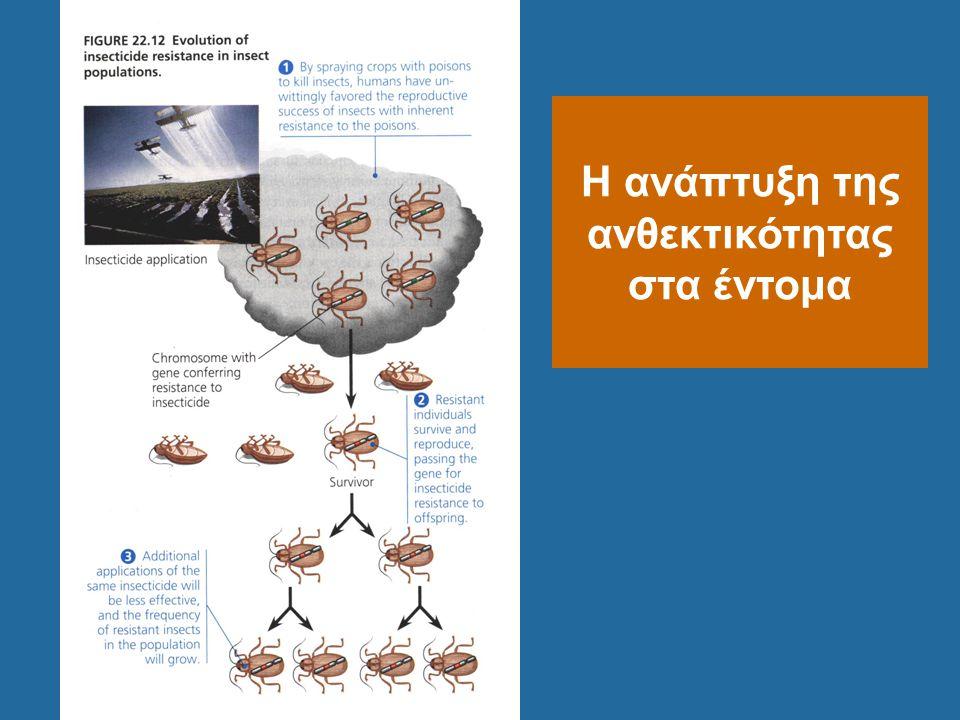Η ανάπτυξη της ανθεκτικότητας στα έντομα