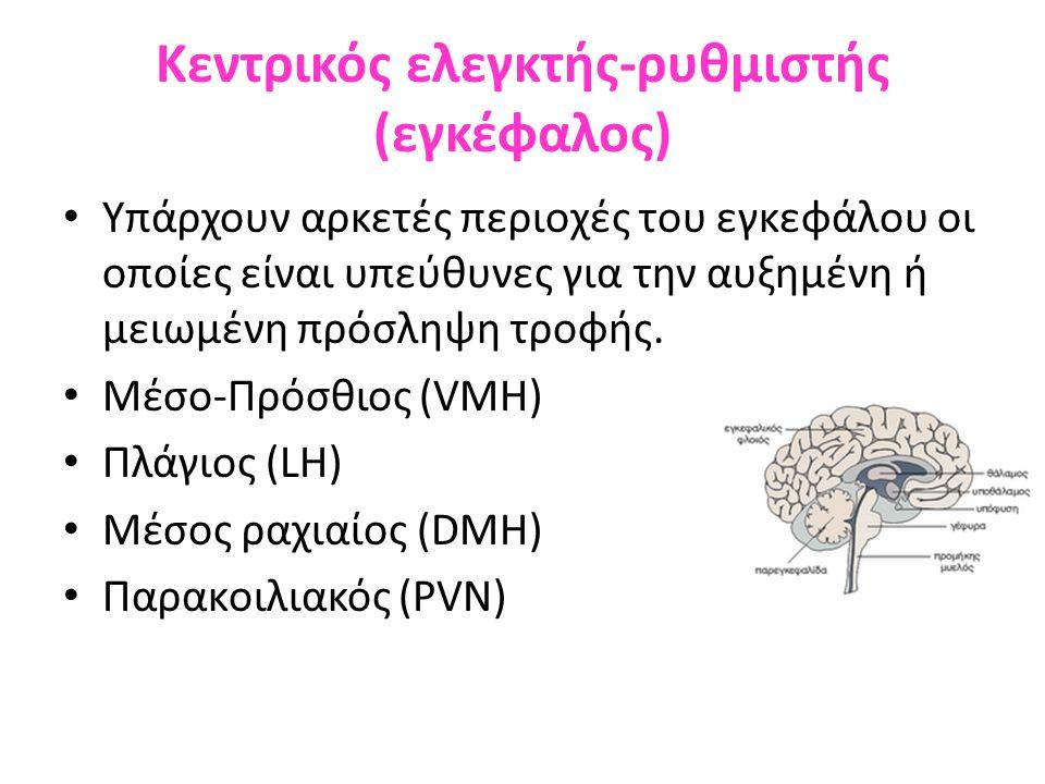 Κεντρικός ελεγκτής-ρυθμιστής (εγκέφαλος) Υπάρχουν αρκετές περιοχές του εγκεφάλου οι οποίες είναι υπεύθυνες για την αυξημένη ή μειωμένη πρόσληψη τροφής