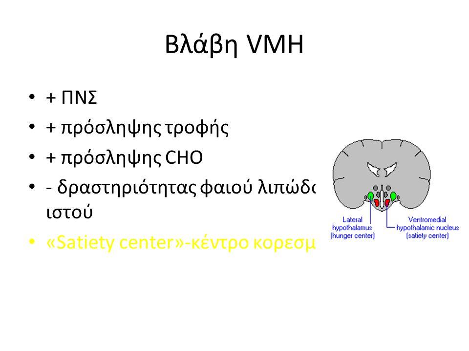 Βλάβη VMH + ΠΝΣ + πρόσληψης τροφής + πρόσληψης CHO - δραστηριότητας φαιού λιπώδους ιστού «Satiety center»-κέντρο κορεσμού