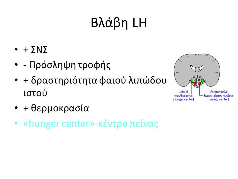 Βλάβη LH + ΣΝΣ - Πρόσληψη τροφής + δραστηριότητα φαιού λιπώδους ιστού + θερμοκρασία «hunger center»-κέντρο πείνας
