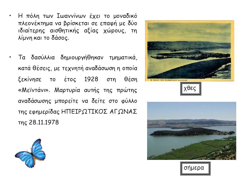 Η πόλη των Ιωαννίνων έχει το μοναδικό πλεονέκτημα να βρίσκεται σε επαφή με δύο ιδιαίτερης αισθητικής αξίας χώρους, τη λίμνη και το δάσος. Τα δασύλλια