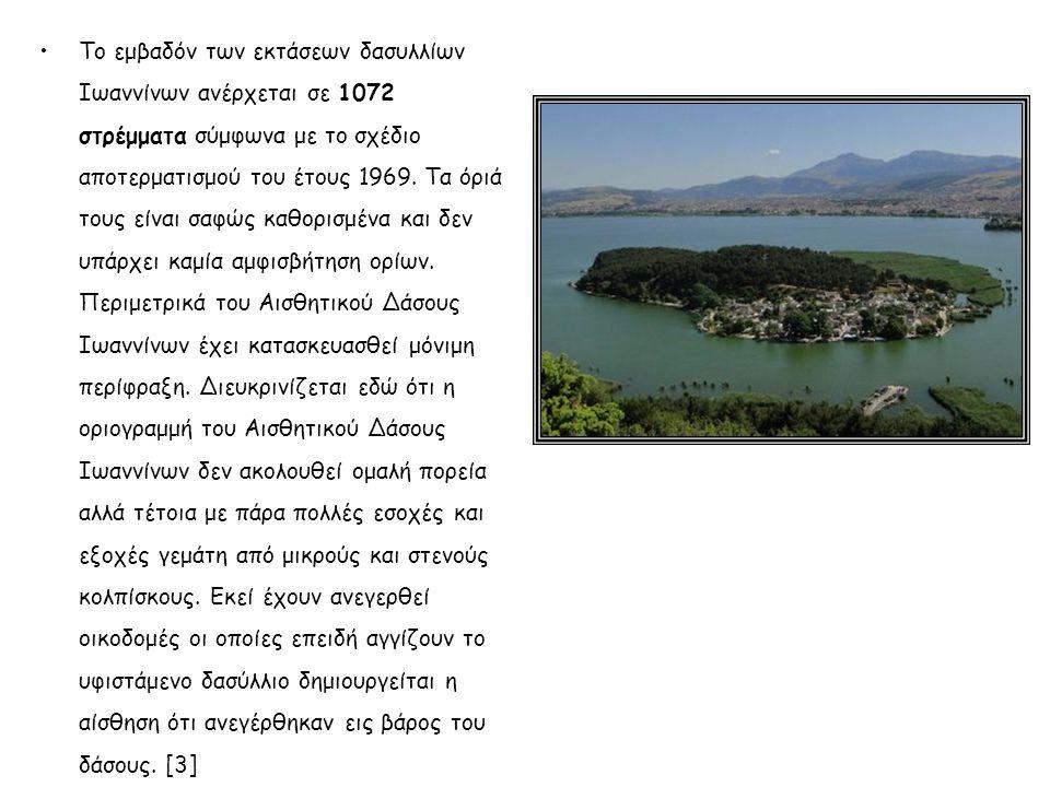 Το εμβαδόν των εκτάσεων δασυλλίων Ιωαννίνων ανέρχεται σε 1072 στρέμματα σύμφωνα με το σχέδιο αποτερματισμού του έτους 1969. Τα όριά τους είναι σαφώς κ