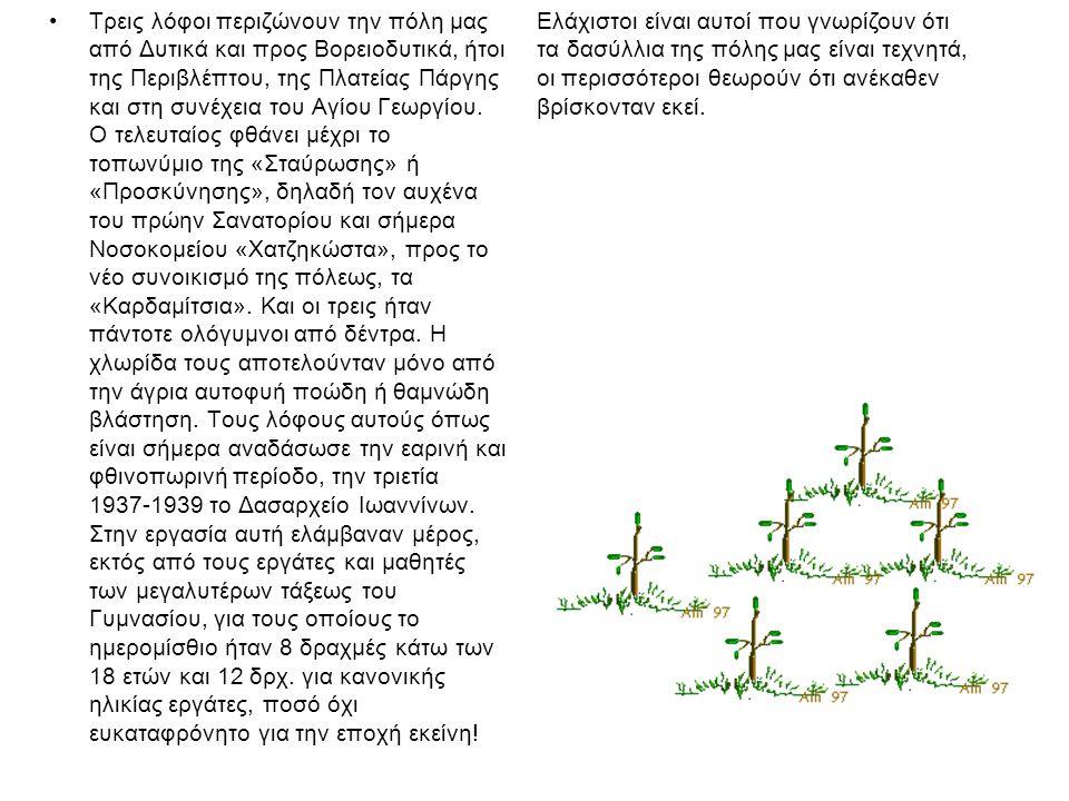 ΧΩΡΟΙ ΑΝΑΨΥΧΗΣ Για την εξυπηρέτηση αναγκών δασικής αναψυχής έχουν εγκατασταθεί σε 4 θέσεις (Τσιφλικόπουλο, Αγία Τριάδα, Δροσιά κα Προφήτης Ηλίας) χώροι αναψυχής- παιδικές χαρές και έχει αναπτυχθεί δίκτυο μονοπατιών - πεζόδρομων μήκους 7 km τα οποία χρησιμοποιούνται σε υψηλό βαθμό και απαιτείται η επέκτασή τους.