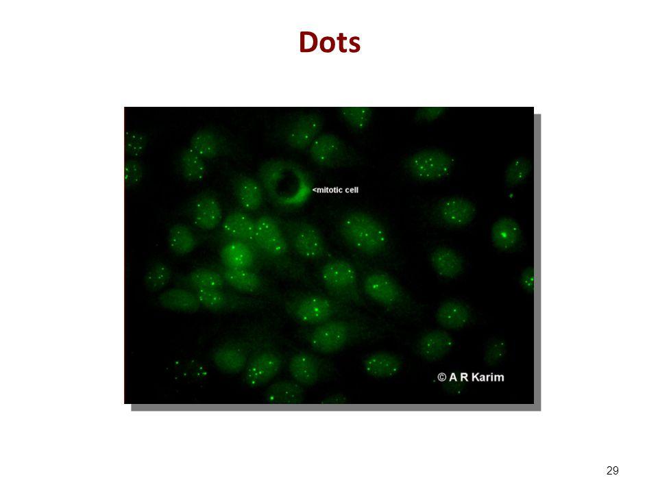 Dots 29