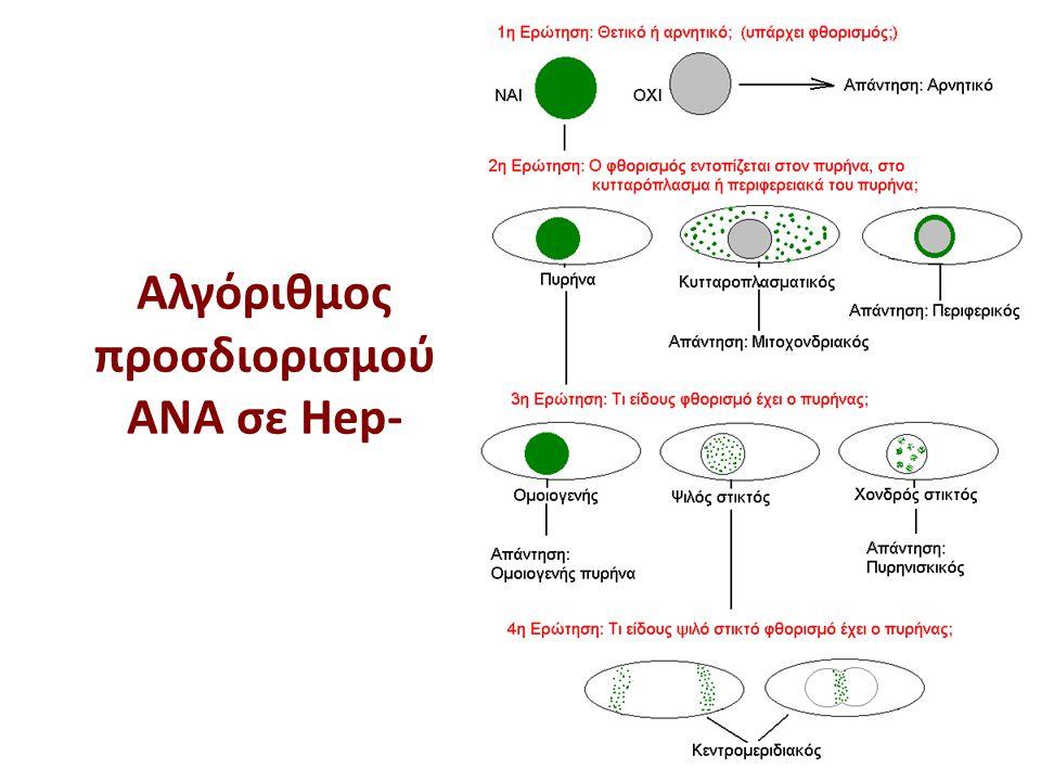 Αλγόριθμος προσδιορισμού ΑΝΑ σε Hep- 31