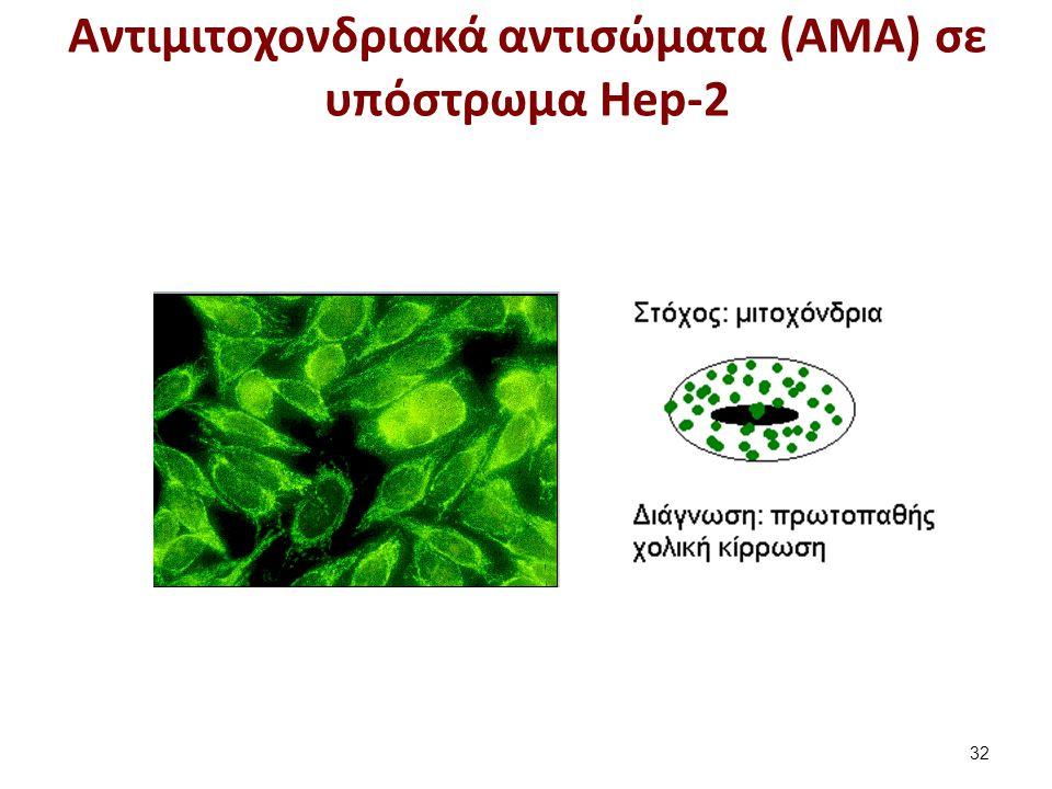 Αντιμιτοχονδριακά αντισώματα (ΑΜΑ) σε υπόστρωμα Hep-2 32