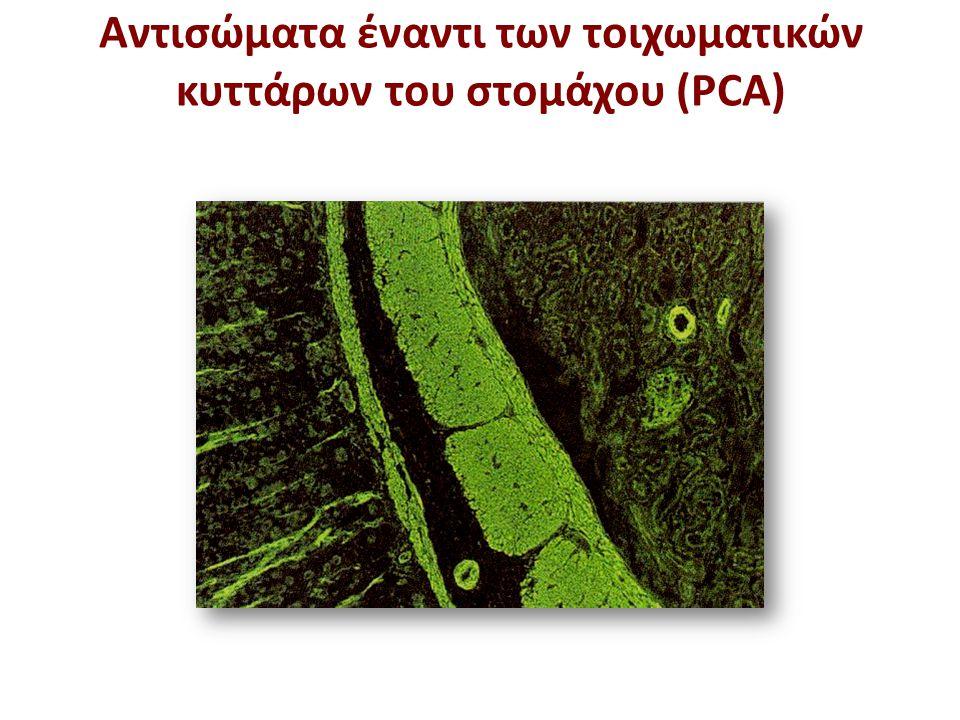 Aντισώματα έναντι των τοιχωματικών κυττάρων του στομάχου (PCA)