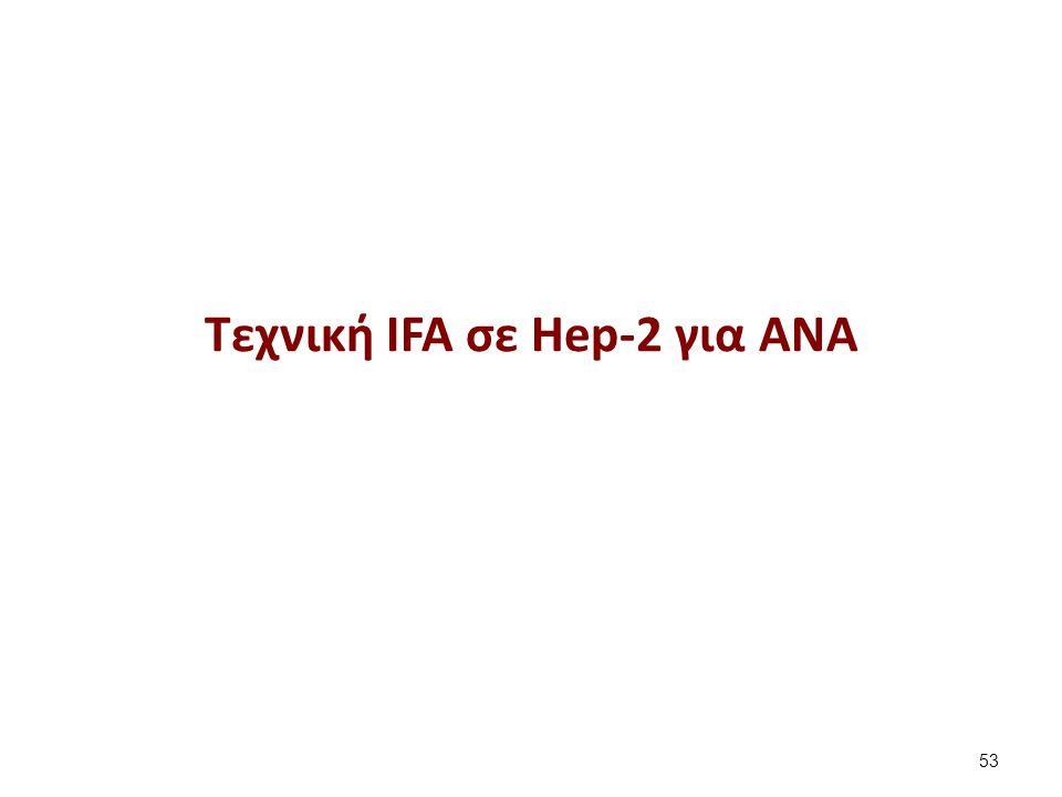 Τεχνική ΙFA σε Hep-2 για ANA 53