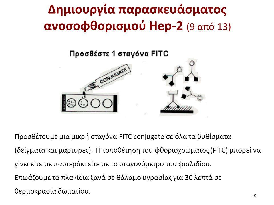 Δημιουργία παρασκευάσματος ανοσοφθορισμού Hep-2 (9 από 13) 62 Προσθέτουμε μια μικρή σταγόνα FITC conjugate σε όλα τα βυθίσματα (δείγματα και μάρτυρες)