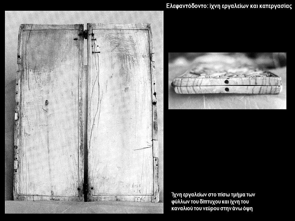 Ελεφαντόδοντο: ίχνη εργαλείων και κατεργασίας Ίχνη εργαλείων στο πίσω τμήμα των φύλλων του δίπτυχου και ίχνη του καναλιού του νεύρου στην άνω όψη
