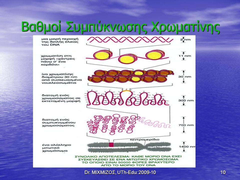 Dr. ΜΙΧΜΙΖΟΣ, UTh-Edu: 2009-1010 Βαθμοί Συμπύκνωσης Χρωματίνης