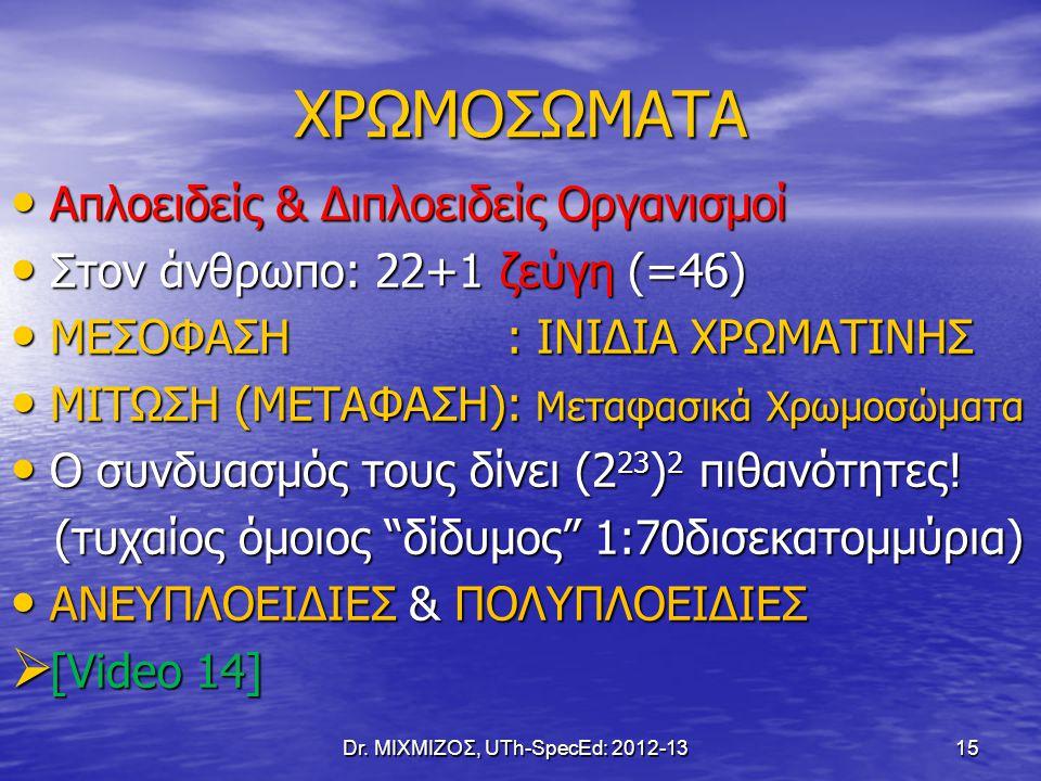 Dr. ΜΙΧΜΙΖΟΣ, UTh-SpecEd: 2012-13 15 ΧΡΩΜΟΣΩΜΑΤΑ Απλοειδείς & Διπλοειδείς Οργανισμοί Απλοειδείς & Διπλοειδείς Οργανισμοί Στον άνθρωπο: 22+1 ζεύγη (=46