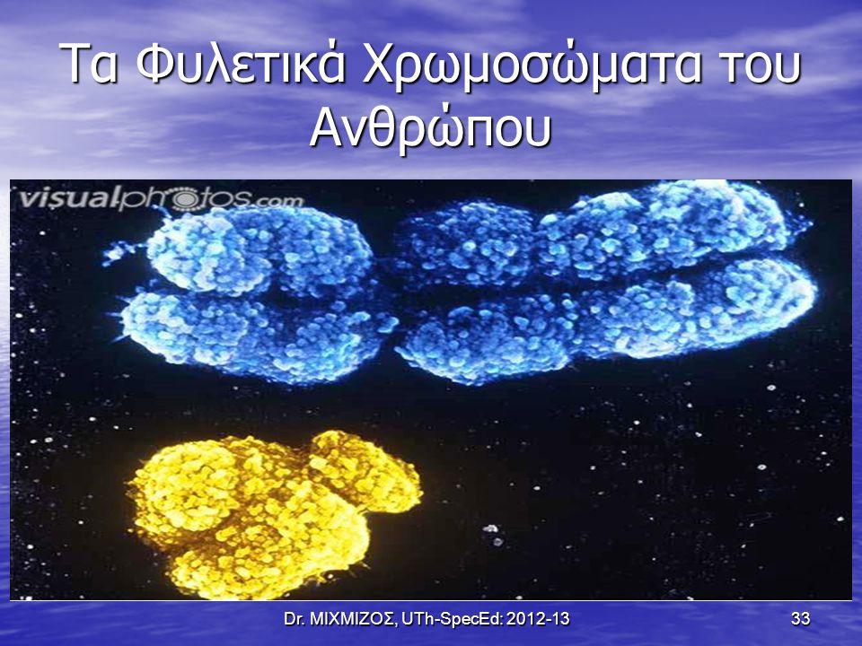 Τα Φυλετικά Χρωμοσώματα του Ανθρώπου Dr. ΜΙΧΜΙΖΟΣ, UTh-SpecEd: 2012-13 33