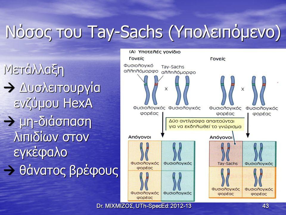 Νόσος του Tay-Sachs (Υπολειπόμενο) Μετάλλαξη  Δυσλειτουργία ενζύμου HexA  μη-διάσπαση λιπιδίων στον εγκέφαλο  θάνατος βρέφους Dr. ΜΙΧΜΙΖΟΣ, UTh-Spe